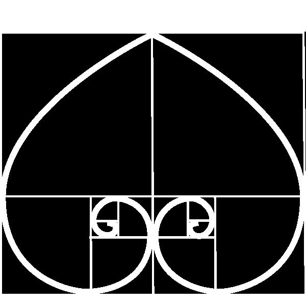 Ace Le | Design